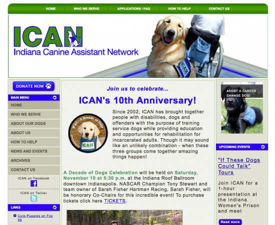 ICAN's site before 24 Hour Web Project by SmallBox
